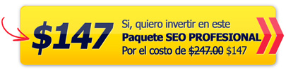 profesional seo