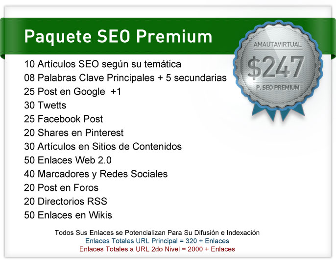paquete seo premium
