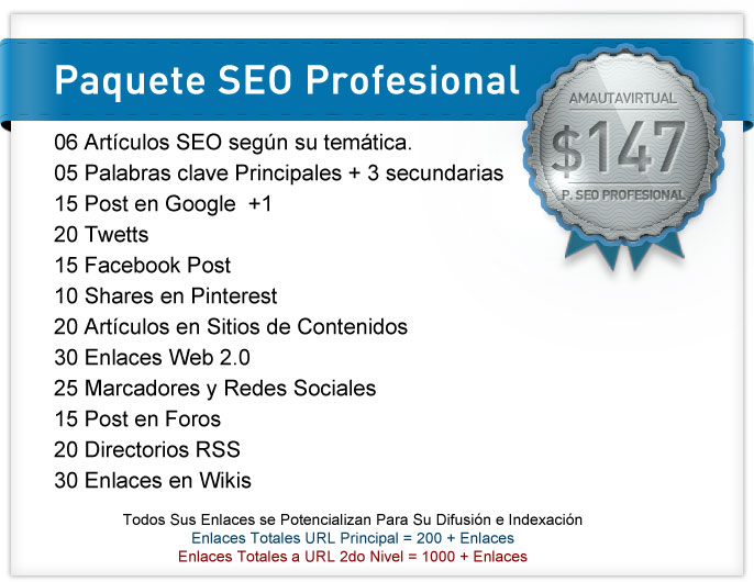 seo profesional